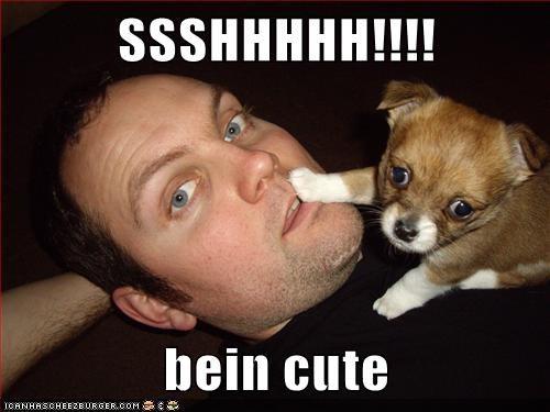 adorable be quiet cute puppy shhhhh shush whatbreed - 5717101312