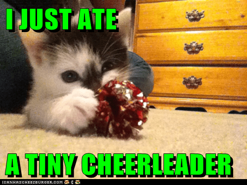 ate ball caption captioned cat cheerleader fyi I just kitten pompom shiny sparkly tiny - 5718138368