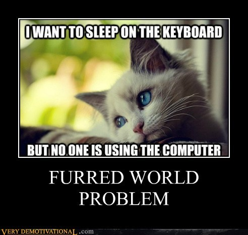 cat First World Problems furry hilarious - 5718194432