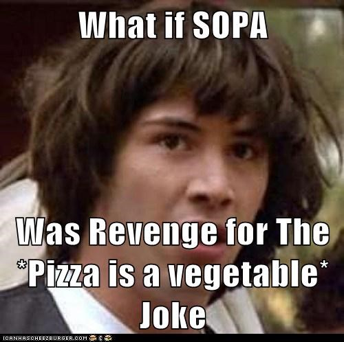 Congress conspiracy keanu pizza SOPA vegetable - 5718759424