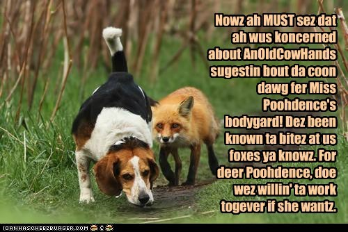 Nowz ah MUST sez dat ah wus koncerned about AnOldCowHands sugestin bout da coon dawg fer Miss Poohdence's bodygard! Dez been known ta bitez at us foxes ya knowz. For deer Poohdence, doe wez willin' ta work togever if she wantz.