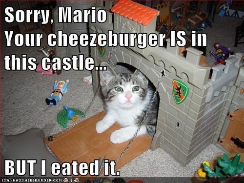 Cheezburger Image 5719613184
