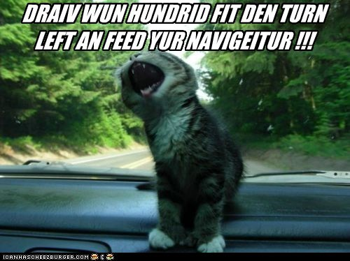 animals,car,cat,driving,food,gps,I Can Has Cheezburger