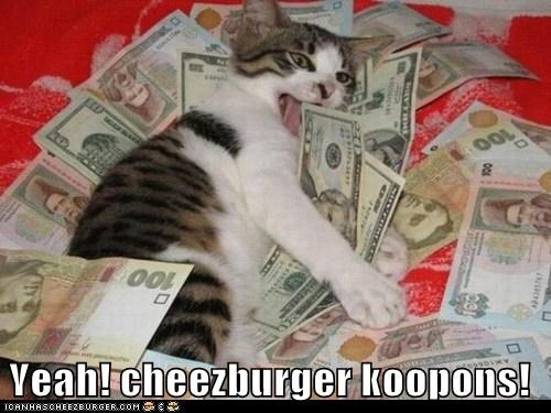 Cheezburger Image 5720114688
