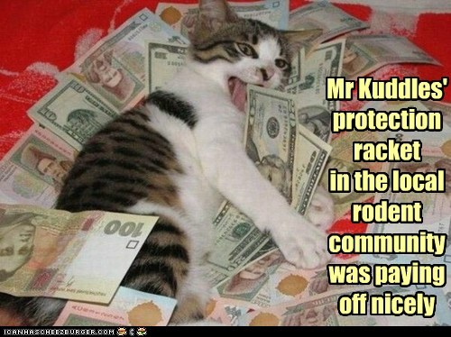 caption captioned cat community local money paying off protection racket rich rodent - 5720551680