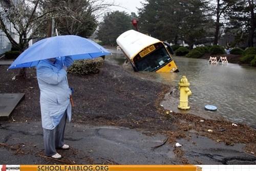 bed crash school bus - 5720583424