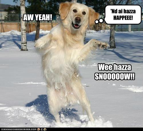 AW YEAH! Wee hazza SNOOOOOW!! 'Nd ai hazza HAPPEEE!