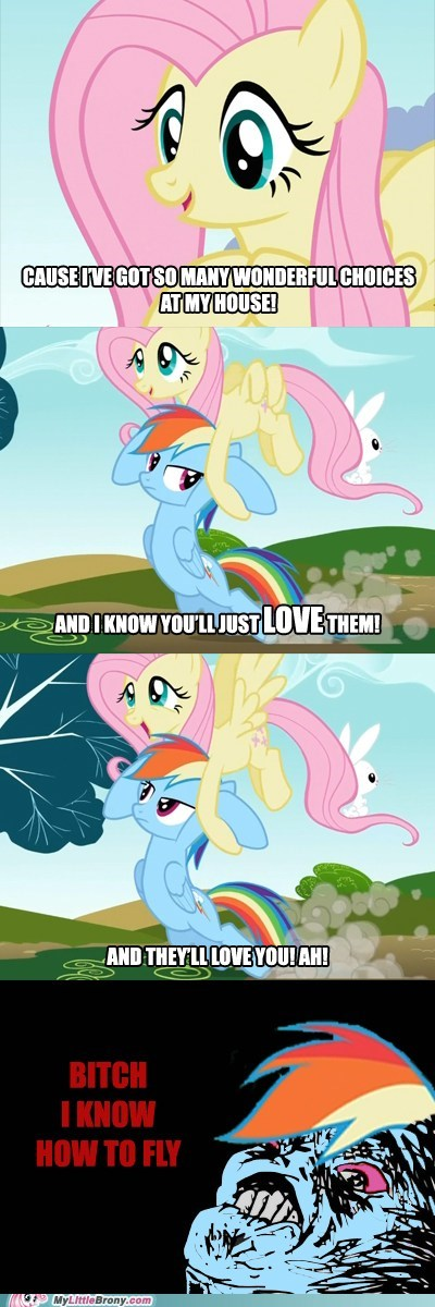 comics fluttershy flying may the best pet win rainbow dash - 5722688768
