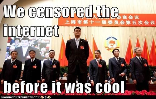 China internet PIPA political pictures SOPA yao ming - 5724181760