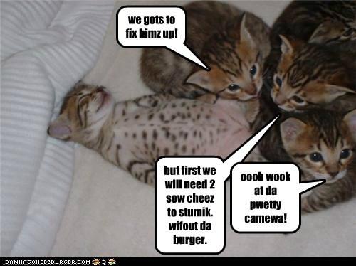 Cheezburger Image 5724758528
