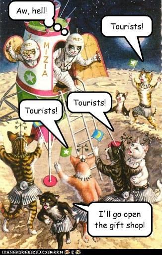 art cat color funny illustration - 5725838336