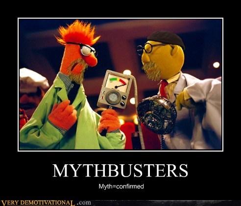 beaker bunson hilarious muppets mythbusters - 5725847808