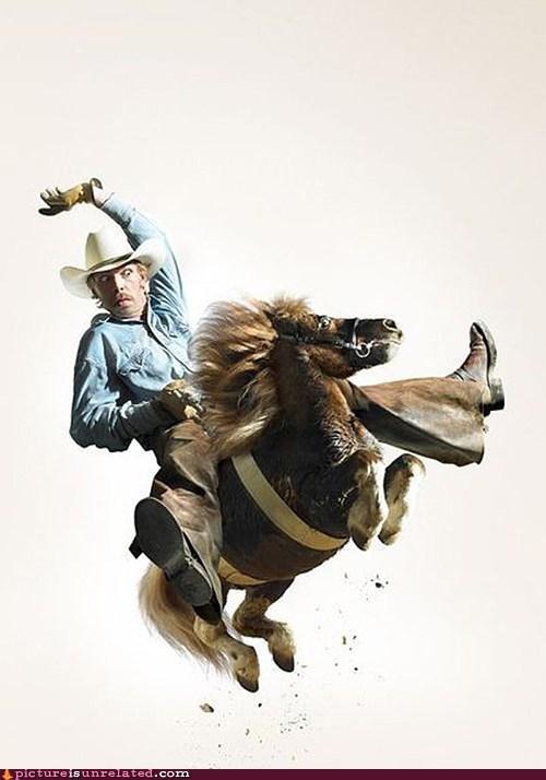 cow boy pony wtf - 5727905792