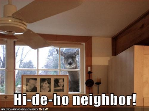 caption captioned deer hi-de-ho home improvement neighbor tool time wilson - 5728331008
