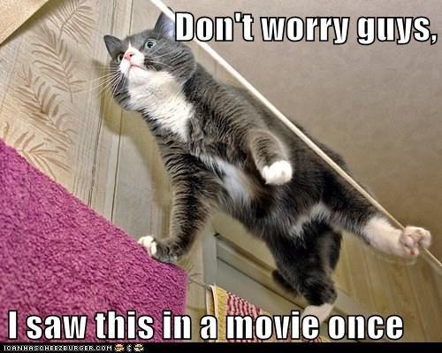bad idea caption captioned cat danger dangerous dont Movie reenactment saw stunt worry - 5728977152