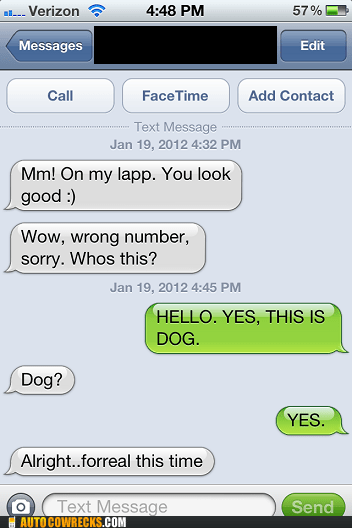 dogs,hello yes this is dog,wrong number