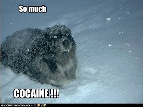 So much COCAINE !!!