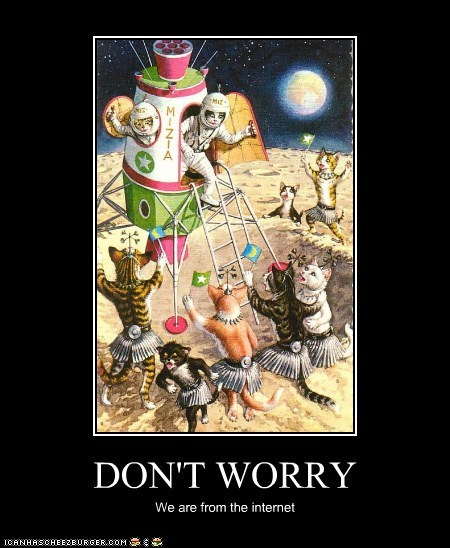 art cat demotivational funny illustration wtf - 5730819584