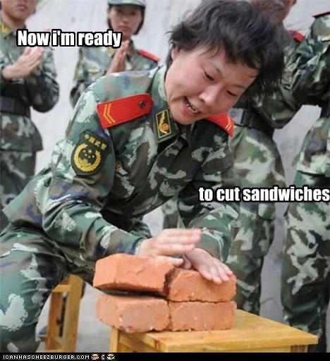 Cheezburger Image 5731515904