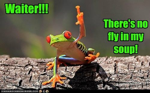 attention caption captioned complaint fly frog hand no raising soup waiter - 5731855872