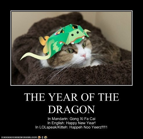 best of the week caption captioned Cats chinese chinese new year cute dragons Hall of Fame hats holidays Year of the Dragon - 5732614656