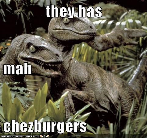 Cheezburger Image 5732827904