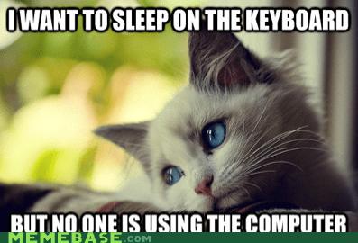 computer First World Problems keyboard sleep warmth - 5733040384