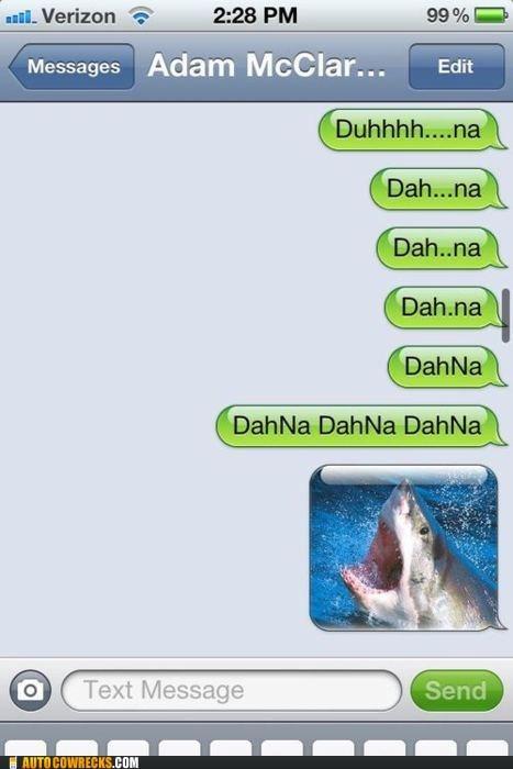 jaws shark shark attack - 5733169664