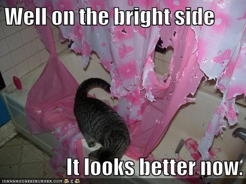 bright caption captioned cat curtain improvement mess perspective shower shredded side upside - 5734152704