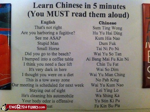 chinese engrish funny Hall of Fame helpful phrases learning a new language - 5735229184