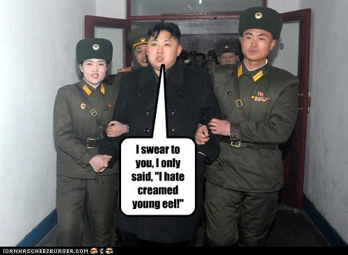Kim Jong-Il,kim jong-un,North Korea,political pictures