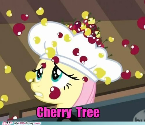 cherry tree fluttershy meme pinkie pie the last roundup - 5735944192