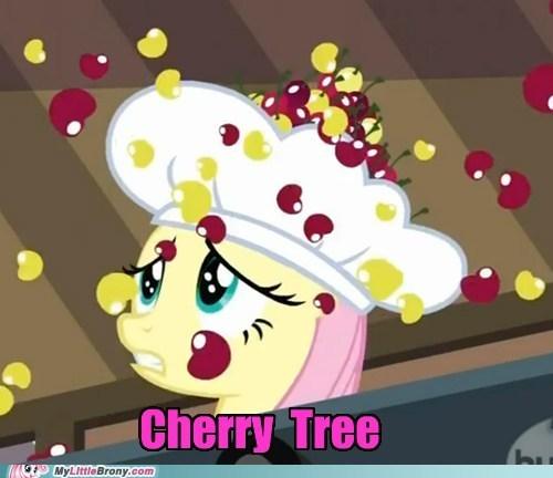 cherry tree fluttershy meme pinkie pie the last roundup - 5735944192