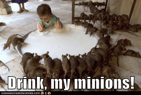 Drink, my minions!