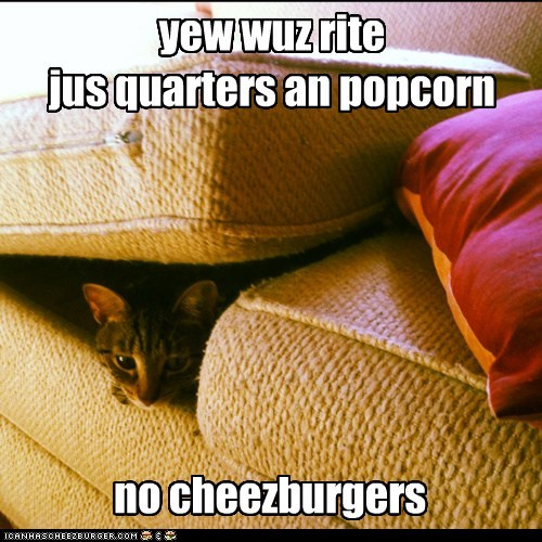 Cheezburger Image 5736597504