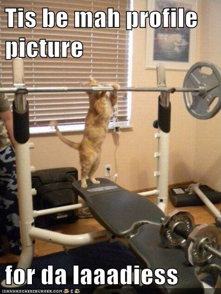caption,captioned,cat,facebook,for,ladies,lifting,picture,posing,profile,this,weight,weights