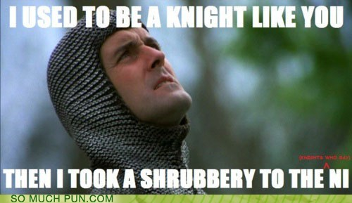 adventurer arrow to the knee double meaning Hall of Fame homophone knight meme monty python monty python and the holy grail ni quote shrubbery Skyrim the knights who say ni TO - 5737392384