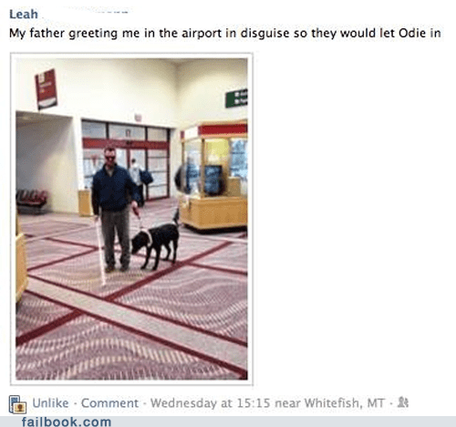 airport blind faking Featured Fail parents seeing-eye dog win