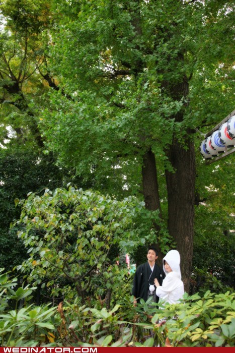 bride Forest funny wedding photos groom japanese wedding - 5738225664