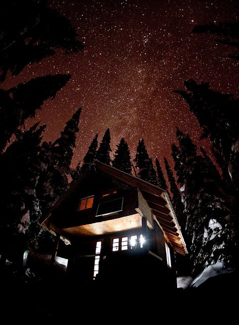 amazing cabin Forest getaways night sky sky snow starry night trees unknown location winter