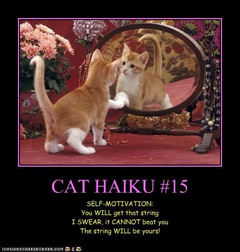 CAT HAIKU #15