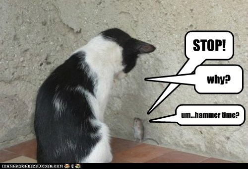 answer caption captioned cat excuse hammer mouse question reason request stop time why - 5739447040