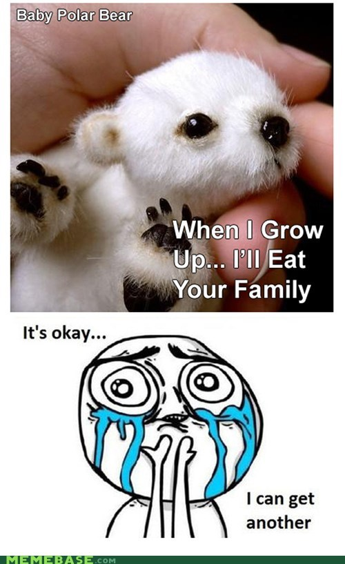 baby,best of week,family,polar bear,Rage Comics,squee
