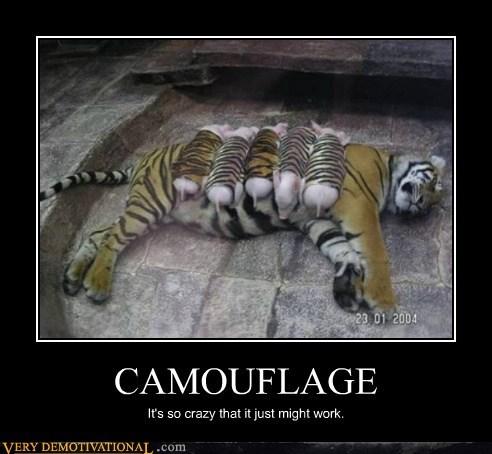 camouflage crazy hilarious pig - 5741572352