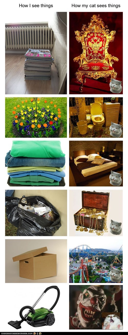 beds boxes clowns different flowers garbage laundry magazines scared toilets treasure vacuum vs - 5741599232