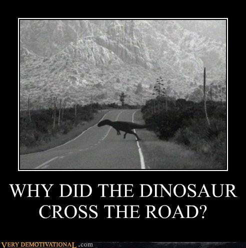 dinosaur hilarious road wtf - 5742244096