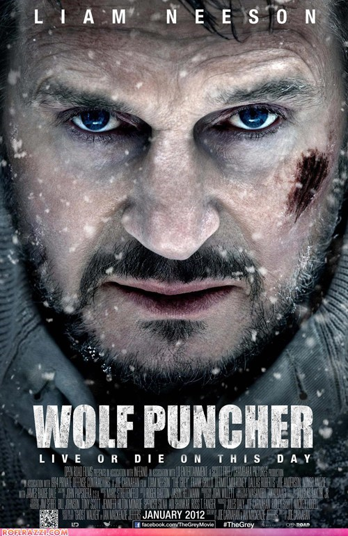 actor,celeb,funny,liam neeson,Movie,the grey