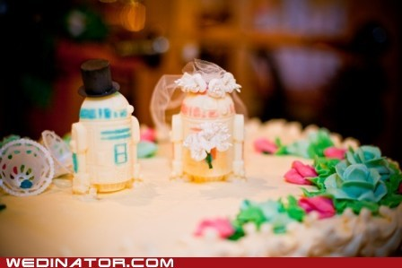 cake toppers,funny wedding photos,Hall of Fame,r2d2,star wars,veil,wedding cake