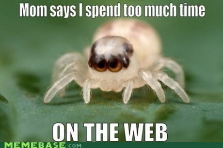 charlottes-web for jill Memes spider web - 5742549504