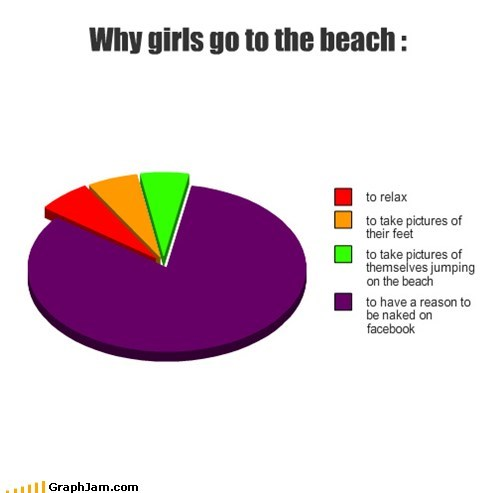 beach facebook Fap Book Pie Chart swimwear - 5742596864